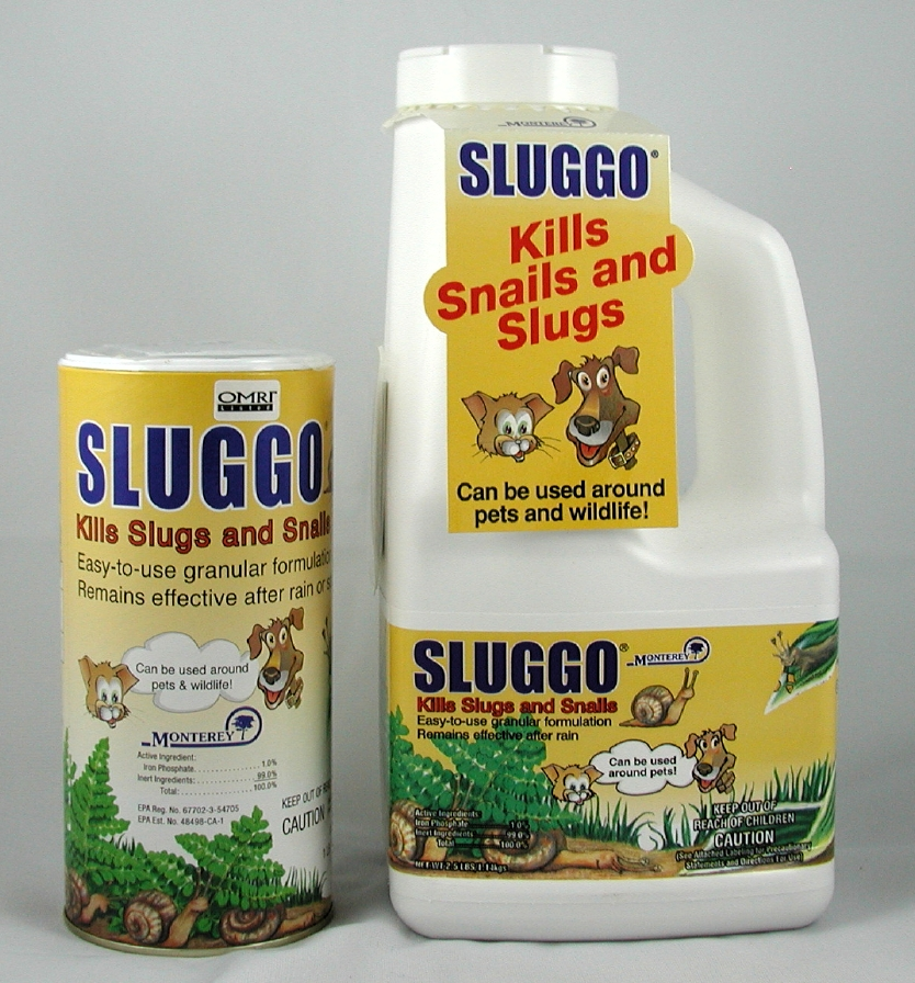 Organic ways for how to get rid of slugs in your garden for How to get rid of slugs in garden